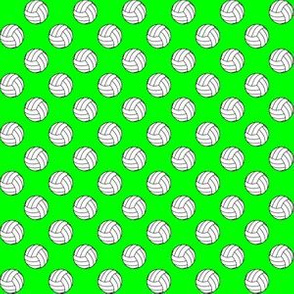 Half Inch Black and White Volleyball Balls on Lime Green