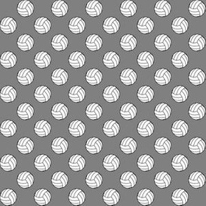 Half Inch Black and White Volleyballs on Medium Gray