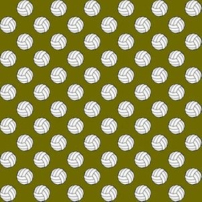 Half Inch Black and White Volleyballs on Olive Green