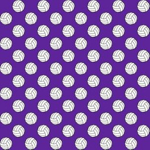 Half Inch Black and White Volleyballs on Purple