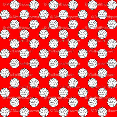 Half Inch Black and White Volleyballs on Red