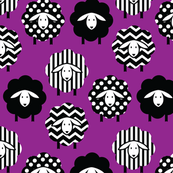 BLACK AND WHITE SHEEP ON VIOLET