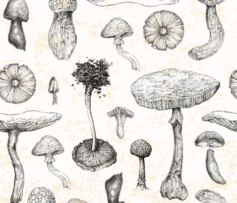 Rrmushroom_stippled_swatch_bigger_upload_contest155098preview