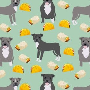 pitbull taco fabric - dogs and burritos design - mint