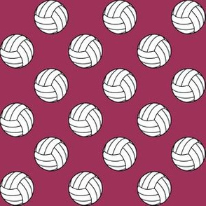 One Inch Black and White Volleyballs on Sangria Pink