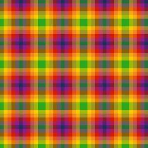 rainbow tartan