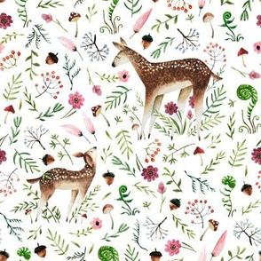 Wandering Deer in the Meadow
