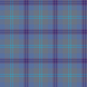 "Great Scot tartan - 6"" weathered"