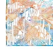 colored_koi_2