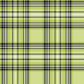 lime green tartan