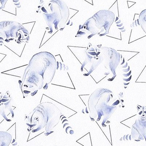 Watercolor Raccoons VS Triangles