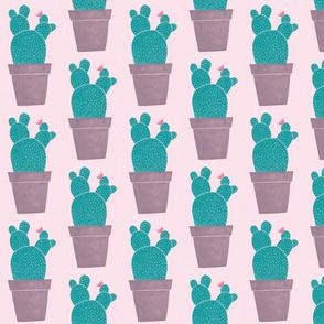 Pink print cactus