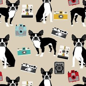 boston terrier and vintage cameras fabric cute dogs and cameras - khaki