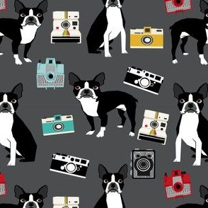 boston terrier and vintage cameras fabric cute dogs and cameras - charcoal