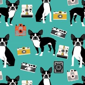 boston terrier and vintage cameras fabric cute dogs and cameras - turquoise