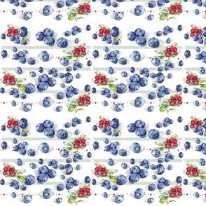 Blueberry & Cranberry Crush