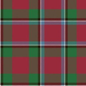 "Sinclair / Logan tartan, 6"" muted"