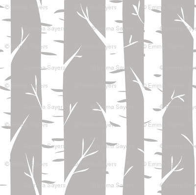 Birch Trees on Grey