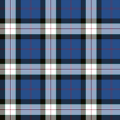 "Sinclair dress dance tartan, 6"" muted"