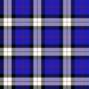 Sinclair dress dance tartan, 6""
