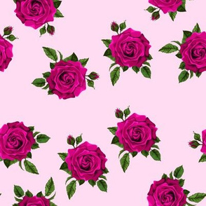 Roses Cerise on pale pink