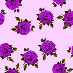 Roses Purple on lavender