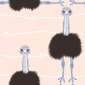 Emu / Australian Bird