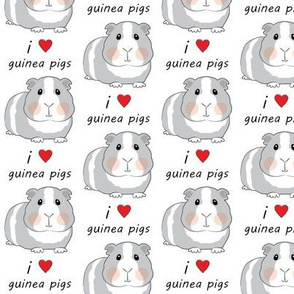 i love guinea pigs - grey