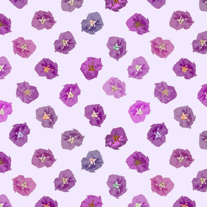T's Flowers - Shades of Purple