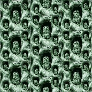 owls_in_tree-