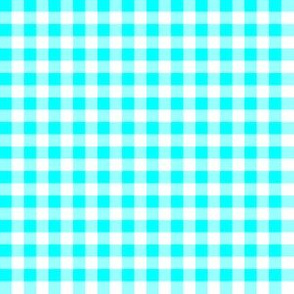 Quarter Inch Aqua Blue and White Gingham Check