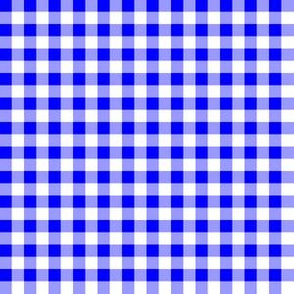 Quarter Inch Blue and White Gingham Check