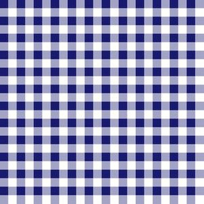 Quarter Inch Midnight Blue and White Gingham Check