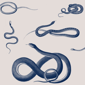 Victorian Snakes (large)