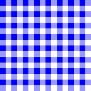 Half Inch Blue and White Gingham Check