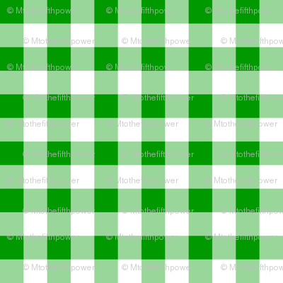 Half Inch Christmas Green and White Gingham Check