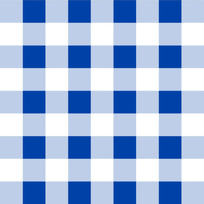 Classic Gingham ~ Hillary Blue and White