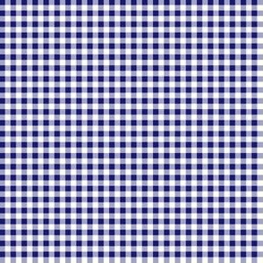 Eighth Inch Midnight Blue and White Gingham Check