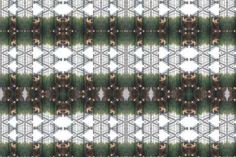 IMG_20170921_022311 fabric by ele-vi on Spoonflower - custom fabric