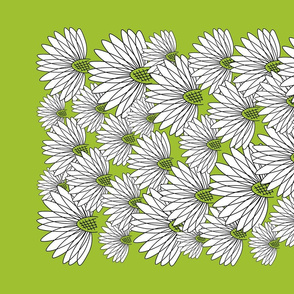 white flowers on greenery