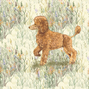 Apricot Poodle in Wildflowers for Pillow