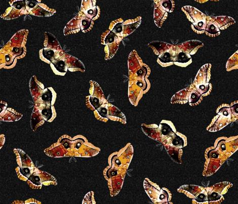 Polyphemus Moths - on Black fabric by engravogirl on Spoonflower - custom fabric