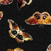 Polyphemusmoths-_black_noise_shop_thumb