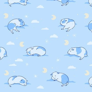 Sleeping Guinea pigs/Piggies