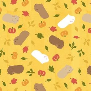 Guinea pig/Piggy in Autumn