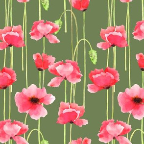 Watercolor poppies_on green