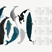 2019 whale tea towel calendar - whales by andrea lauren