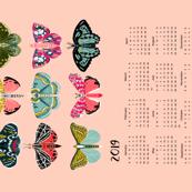 2019 moth tea towel calendar - moths by andrea lauren