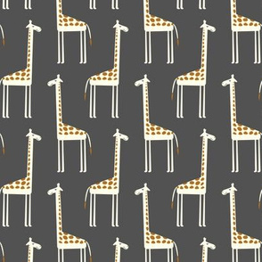 cute giraffes on dark grey