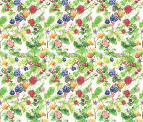 Rubus! fabric by infamous_sphere_ on Spoonflower - custom fabric